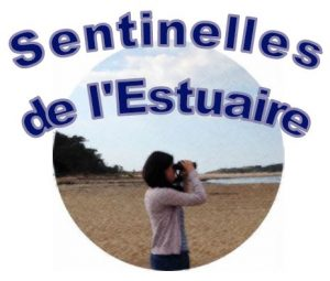 logo-sentinelle2