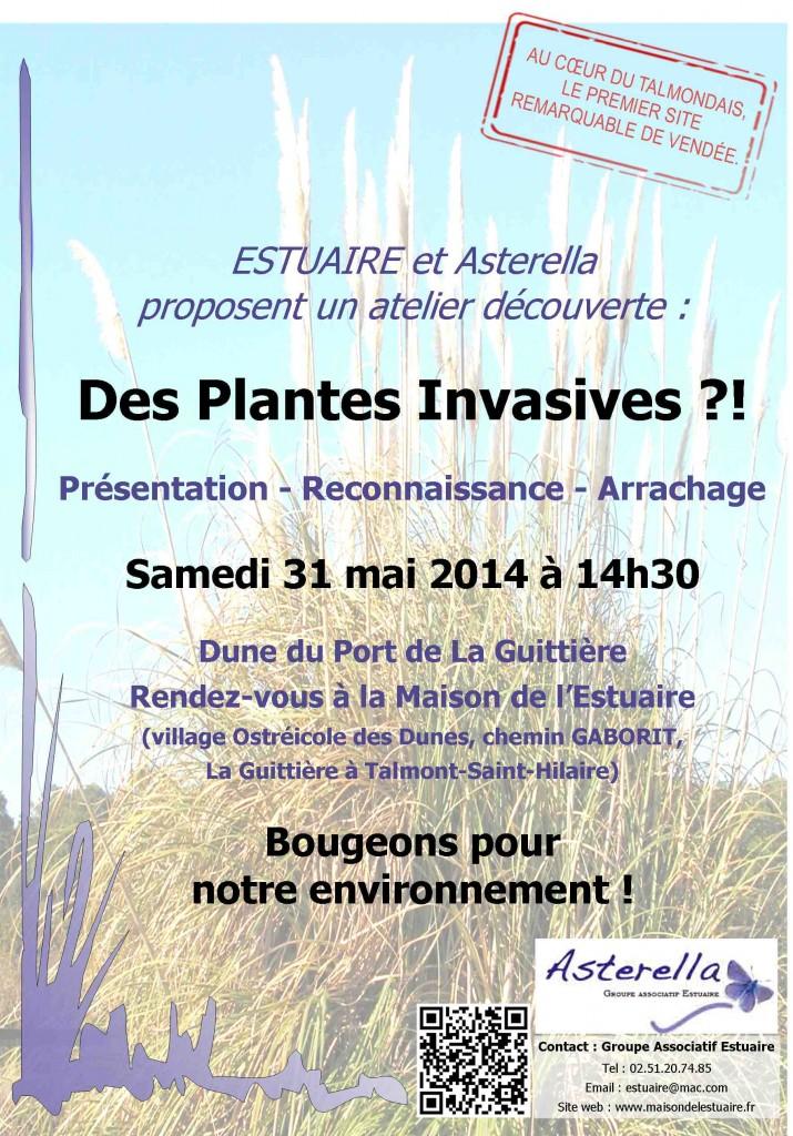 Journée plantes invasives samedi 31mai à 14h30 à la maison de l'